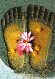 Buddhas fodspor